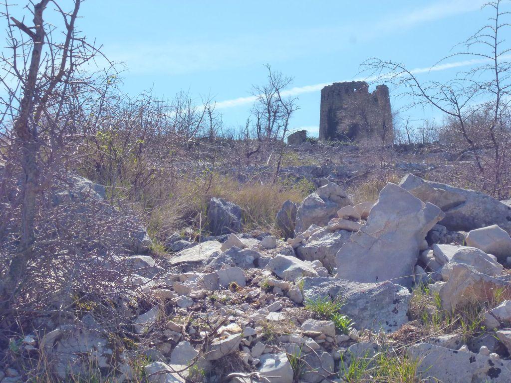 Живописные развалины. Фото: Елена Арсениевич, CC BY-SA 3.0