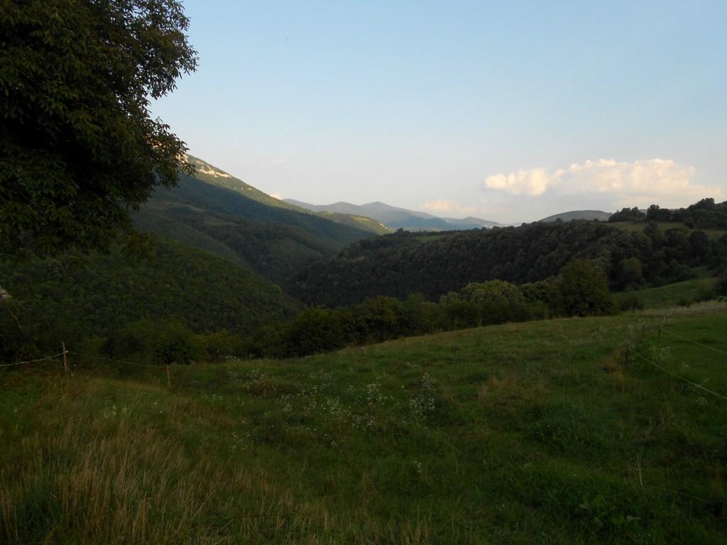 Вид на округу. Фото: Елена Арсениевич, CC BY-SA 3.0