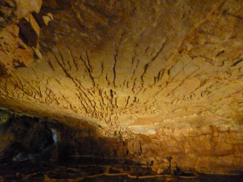 Потолок пещеры. Фото: Елена Арсениевич, CC BY-SA 3.0