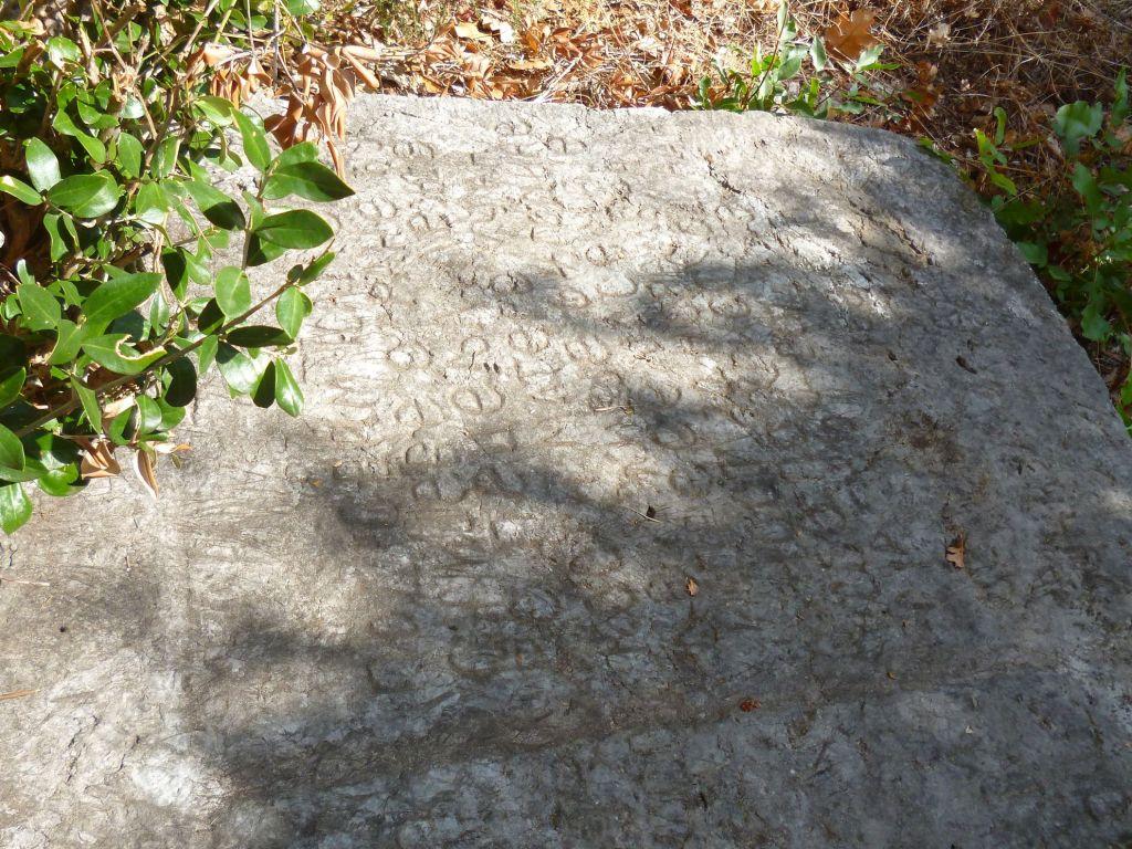 Надгробная плита с текстом о монахине Марте. Фото: Елена Арсениевич, CC BY-SA 3.0