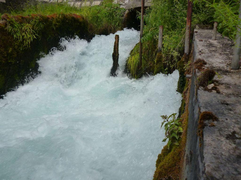 Плава вода. Фото: Елена Арсениевич, CC BY-SA 3.0