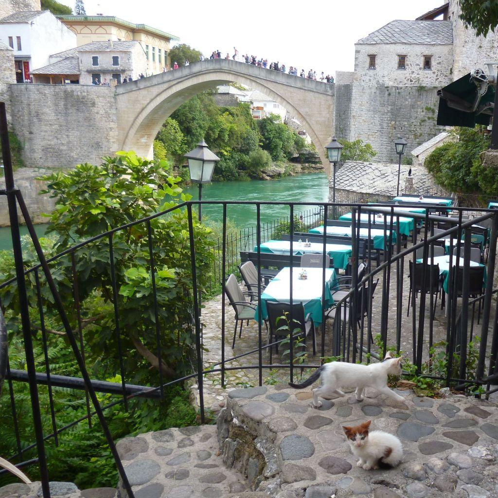 Старый мост и котики. Фото: Елена Арсениевич, CC BY-SA 3.0