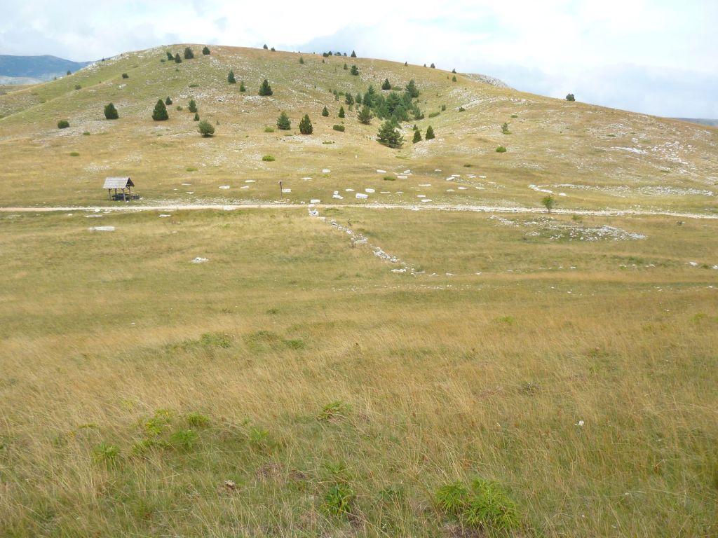 Холмы и сухая трава. Барзоня. Фото: Елена Арсениевич, CC BY-SA 3.0