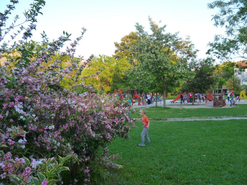 Парк весной. Фото: Елена Арсениевич, CC BY-SA 3.0