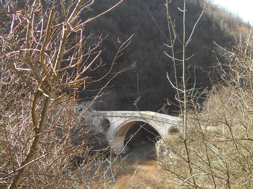 Козий мост на Миляцке. Фото: Елена Арсениевич, CC BY-SA 3.0