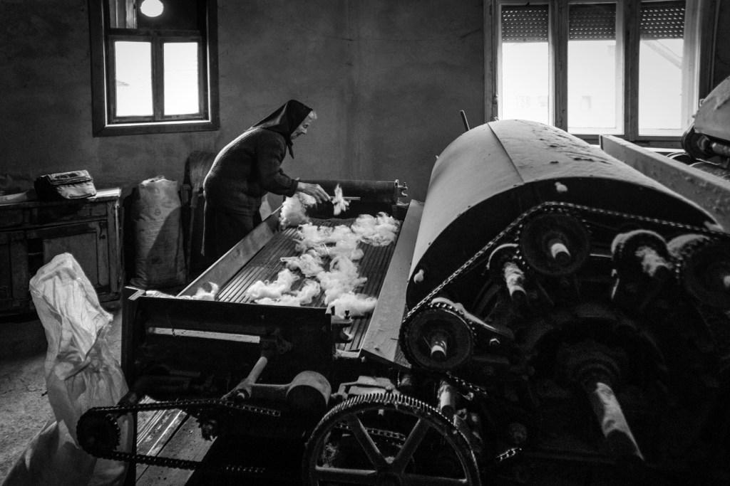 Машина для чесания шерсти. Maja Stosic, CC BY-SA 3.0