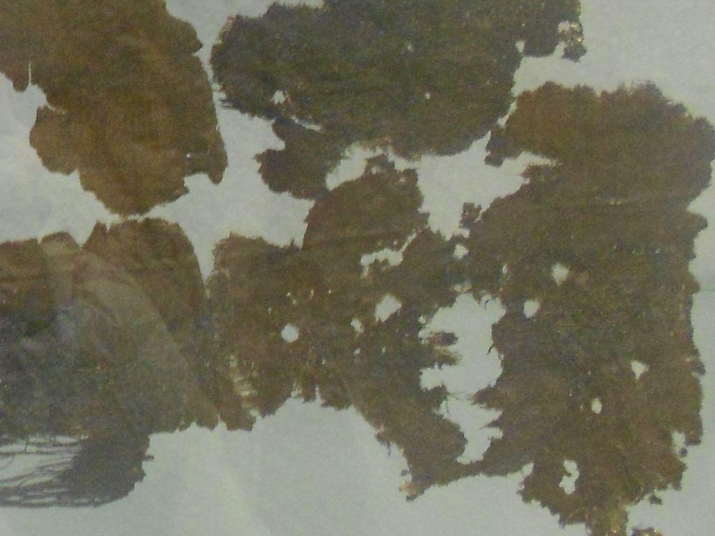 Фрагменты бархатного плаща из королевской могилы. Фото: Елена Арсениевич, CC BY-SA 3.0