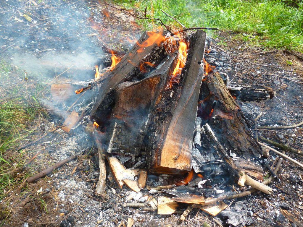 Разводим костёр, чтобы получить горячие угли. Фото: Елена Арсениевич, CC BY-SA 3.0