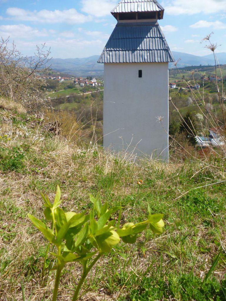 Морозник и часовая башня в крепости Прусац. Фото: Елена Арсениевич, CC BY-SA 3.0