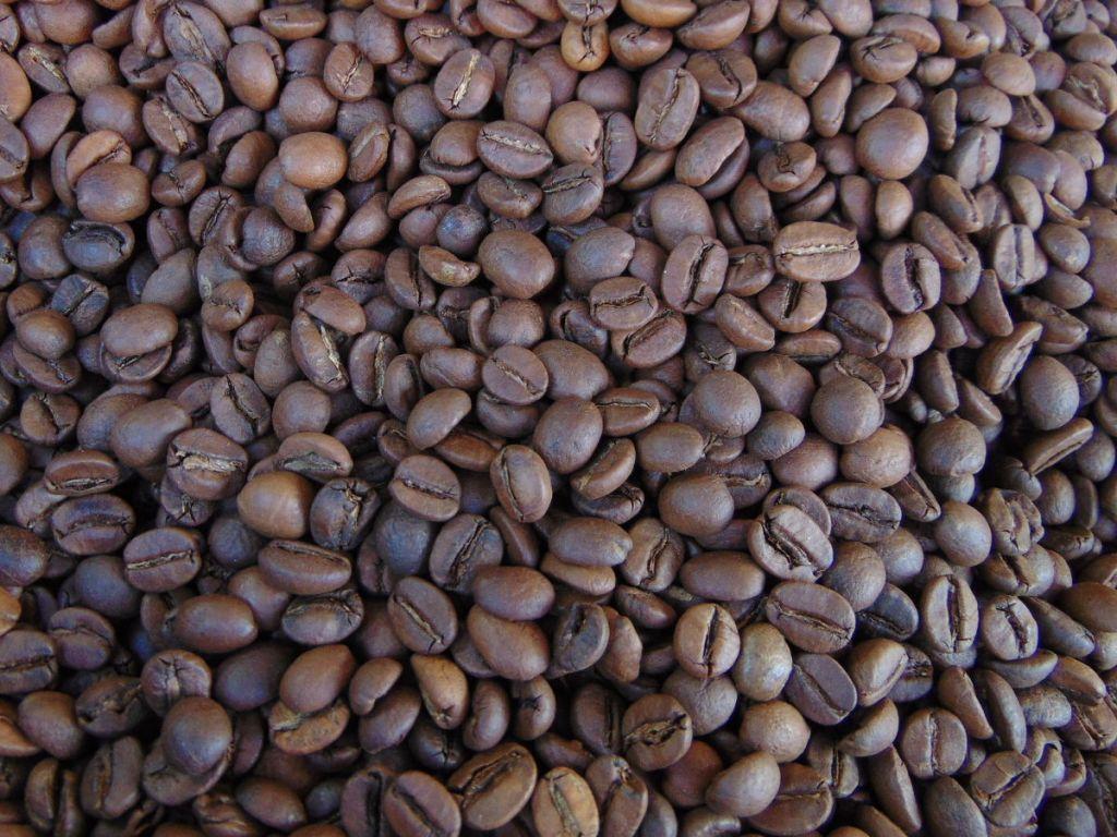 Правильно обжаренный кофе. Фото: Елена Арсениевич, CC BY-SA 3.0