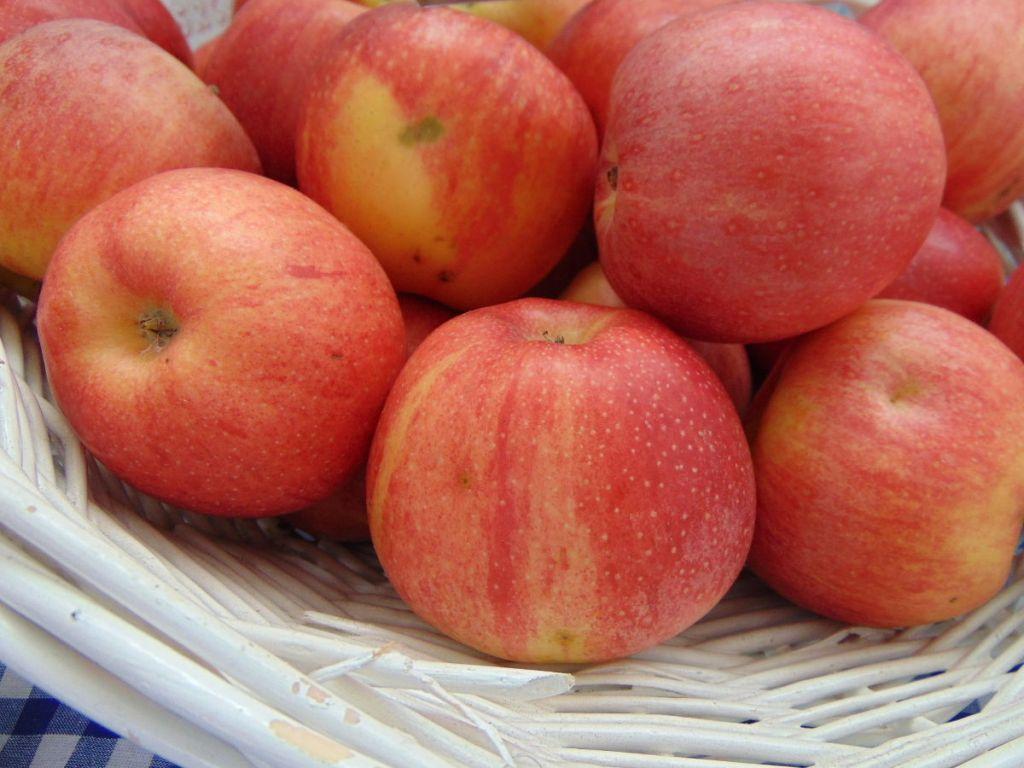 Яблоки из Боснии. Фото: Елена Арсениевич, CC BY-SA 3.0