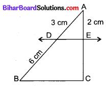 Bihar Board Class 10 Maths Solutions Chapter 6 त्रिभुज Additional Questions VSQ 7