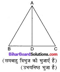 Bihar Board Class 10 Maths Solutions Chapter 6 त्रिभुज Ex 6.5 Q16