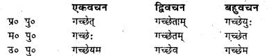 Bihar Board Class 7 Sanskrit व्याकरण धातु-रूपाणि 20