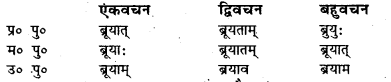Bihar Board Class 7 Sanskrit व्याकरण धातु-रूपाणि 46