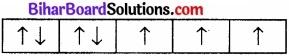 BIhar Board Class 12 Chemistry Chapter 8 d एवं f-ब्लॉक के तत्त्व img 1
