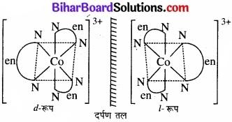 BIhar Board Class 12 Chemistry Chapter 9 उपसहसंयोजन यौगिक img 3