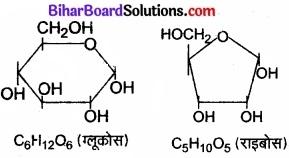 Bihar Board Class 11 Biology Chapter 9 जैव अणु