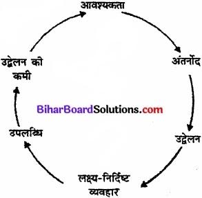 Bihar Board Class 11 Psychology Solutions Chapter 9 अभिप्रेरणा एवं संवेग img 1