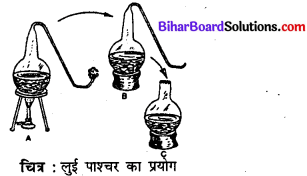 Bihar Board 12th Biology Model Question Paper 5 in Hindi 3