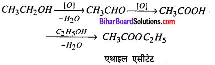 Bihar Board 12th Chemistry Model Question Paper 1 in Hindi - 16