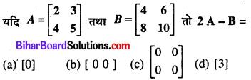 Bihar Board 12th Maths Model Question Paper 1 in Hindi Medium MCQ Q15