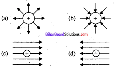 Bihar Board 12th Physics Objective Answers Chapter 1 वैद्युत आवेश तथा क्षेत्र - 5