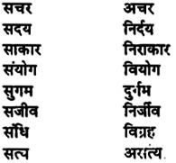 Bihar Board Class 11th Hindi व्याकरण पर्यायवाची शब्द 7