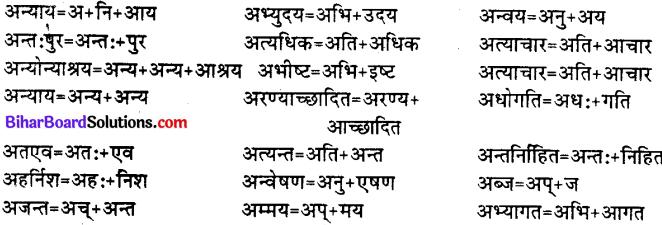 Bihar Board Class 12th Hindi व्याकरण संधि 12