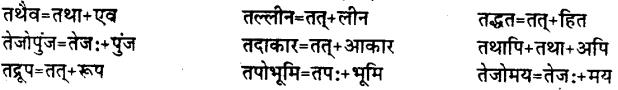 Bihar Board Class 12th Hindi व्याकरण संधि 14