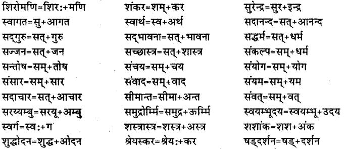 Bihar Board Class 12th Hindi व्याकरण संधि 23