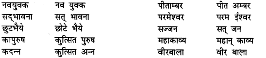 Bihar Board Class 12th Hindi व्याकरण समास 12