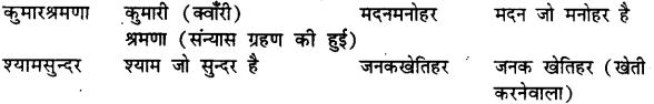 Bihar Board Class 12th Hindi व्याकरण समास 13