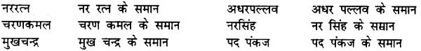 Bihar Board Class 12th Hindi व्याकरण समास 16