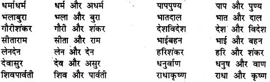 Bihar Board Class 12th Hindi व्याकरण समास 26