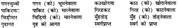 Bihar Board Class 12th Hindi व्याकरण समास 5