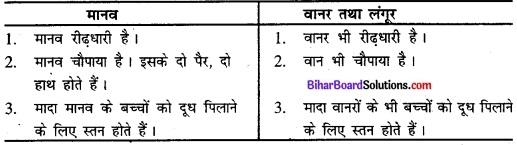 Bihar Board Class 11 History Solutions Chapter 1 समय की शुरुआत से 2Bihar Board Class 11 History Solutions Chapter 1 समय की शुरुआत से