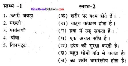Bihar Board Class 6 Science Solutions Chapter 9 जन्तुओं में गति 1