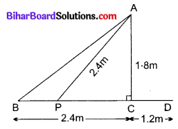 Bihar Board Class 10 Maths Solutions Chapter 6 त्रिभुज Ex 6.6 Q10.1