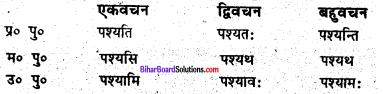 Bihar Board Class 6 Sanskrit व्याकरण धातु-रूपाणि 1