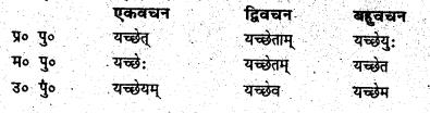 Bihar Board Class 6 Sanskrit व्याकरण धातु-रूपाणि 10