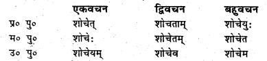 Bihar Board Class 6 Sanskrit व्याकरण धातु-रूपाणि 15
