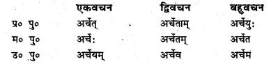 Bihar Board Class 6 Sanskrit व्याकरण धातु-रूपाणि 20