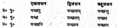 Bihar Board Class 6 Sanskrit व्याकरण धातु-रूपाणि 7