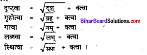 Bihar Board Class 7 Sanskrit Solutions Chapter 11 डॉ. भीमरावः अम्बेदकर 2
