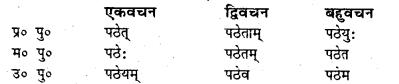 Bihar Board Class 7 Sanskrit व्याकरण धातु-रूपाणि 15