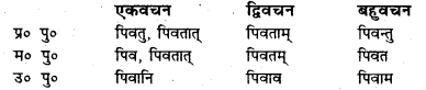 Bihar Board Class 7 Sanskrit व्याकरण धातु-रूपाणि 2