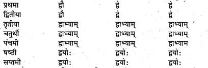 Bihar Board Class 7 Sanskrit व्याकरण शब्दरूपाणि 20