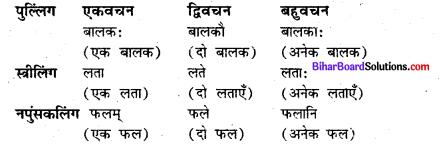 Bihar Board Class 7 Sanskrit व्याकरण संधि 5