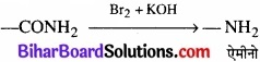 BIhar Board Class 12 Chemistry Chapter 13 ऐमीन img-27